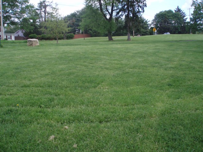 labyrinth along road
